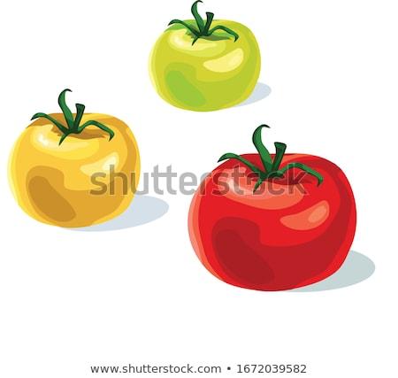 Taze kırmızı domates yeşil kök yalıtılmış Stok fotoğraf © Cipariss