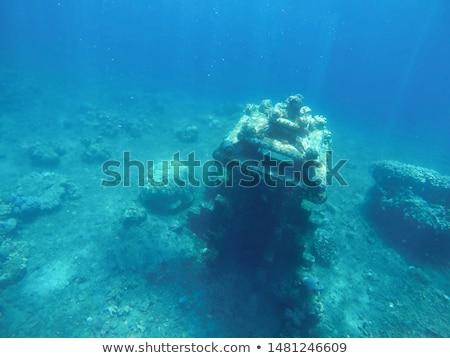 Onderwater oude stad zon stralen abstract Stockfoto © 3dart