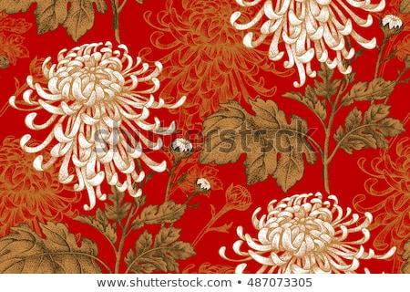 роскошь Vintage цветочный шаблон эксклюзивный Сток-фото © liliwhite