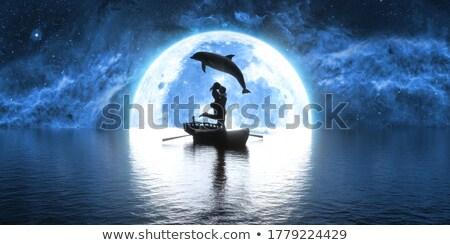 Ilustração saltando golfinho luar amor natureza Foto stock © smeagorl