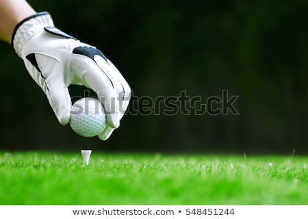 Golf player practicing to hit the ball at the course Stock photo © dashapetrenko