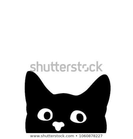 absztrakt · macskák · hal · fekete · macska · fekete · macska - stock fotó © phantom1311
