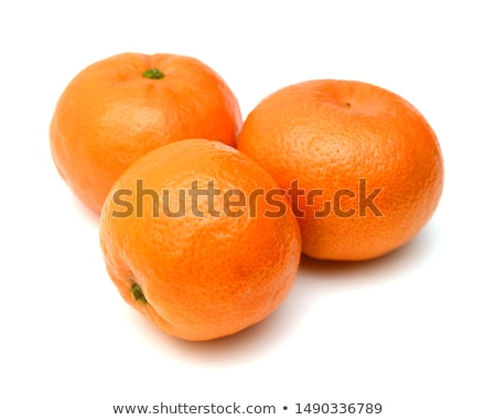 мандарин белый листьев изолированный иллюстрация фрукты Сток-фото © ConceptCafe