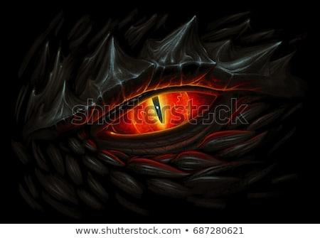 Dragón negro deporte diseno blanco y negro gótico Foto stock © HunterX