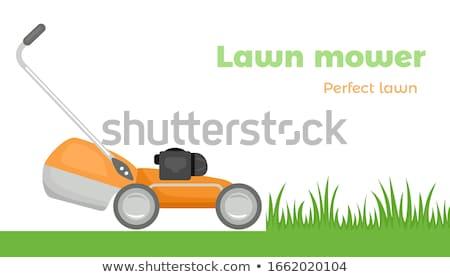 Lawn mower cutting the grass. Stock photo © Kurhan