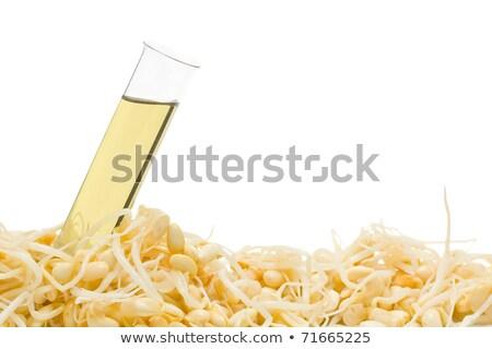 Soja fasoli probówki oleju Zdjęcia stock © ShawnHempel