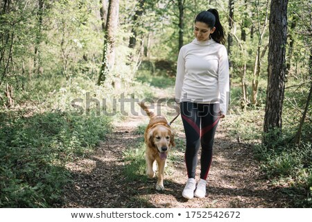 Happy girl petting her dogs while having a walk Stock photo © deandrobot
