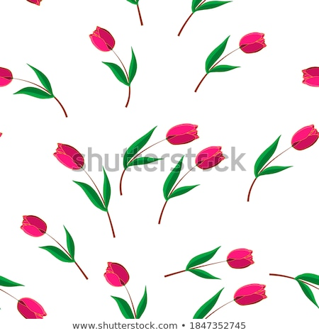 seamless from pink tulips eps 10 stock photo © beholdereye