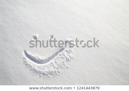 Feliz emoticon cara nieve temporada de invierno Foto stock © stevanovicigor