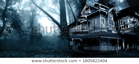 Moonlight House Stock photo © psychoshadow