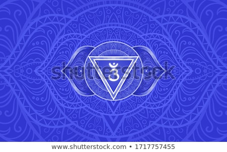 chakra · projeto · símbolo · usado · hinduismo · budismo - foto stock © trikona