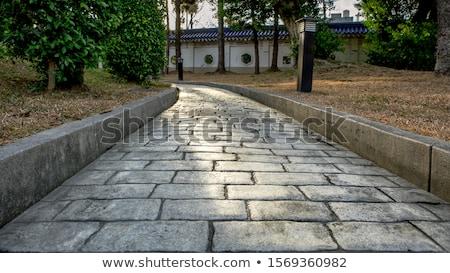 old sidewalk Stock photo © Pilgrimego