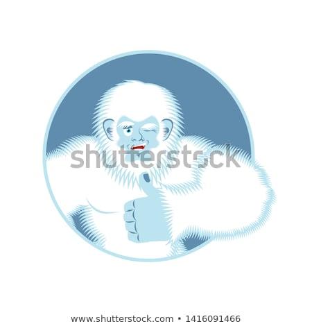 Remek hóember derűs mosoly arc boldog Stock fotó © popaukropa