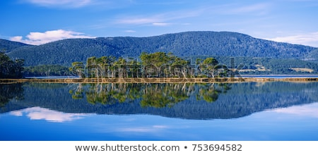 View of Bruny Island beach in the late afternoon. Stock photo © artistrobd