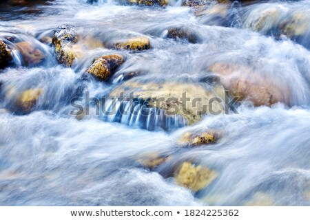 mountain stream waterfall stock photo © raywoo