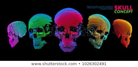 Meetkundig kleurrijk schedel artistiek decoratief print Stockfoto © Vanzyst