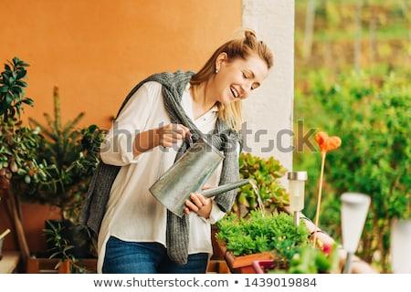 Nő locsol növények erkély virág kert Stock fotó © IS2