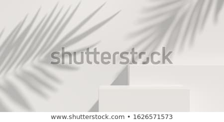 Beauty products in interior Stock photo © ivonnewierink