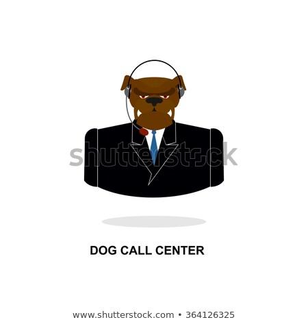 affaires · chien · téléphone · cravate · verres · écouter - photo stock © popaukropa