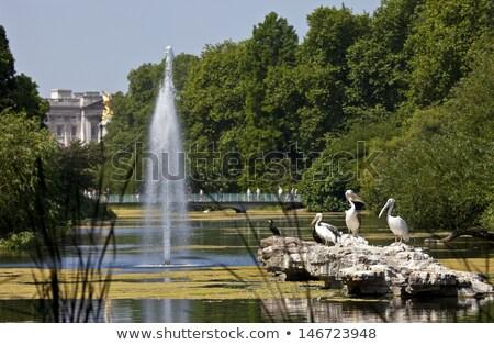Buckingham · Palace · architectuur · koningin · standbeeld · Londen · Engeland - stockfoto © is2