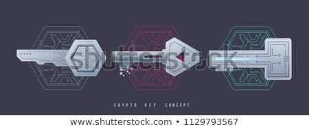 Crypto Key Management Icon. stock photo © WaD