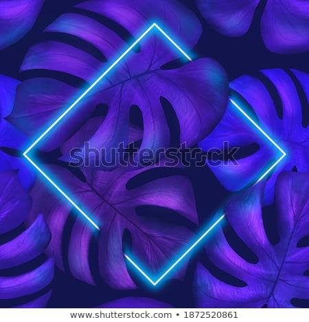 Philadendron leaf illustration Stock photo © PurpleBird