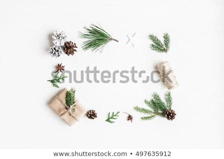 Karácsony elrendezés fenyőfa fenyő ágak vidám Stock fotó © solarseven
