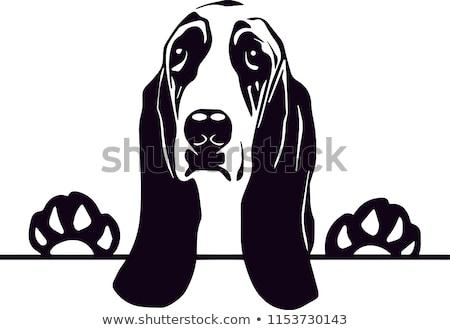 Cartoon ogar podpisania ilustracja biały billboard Zdjęcia stock © cthoman