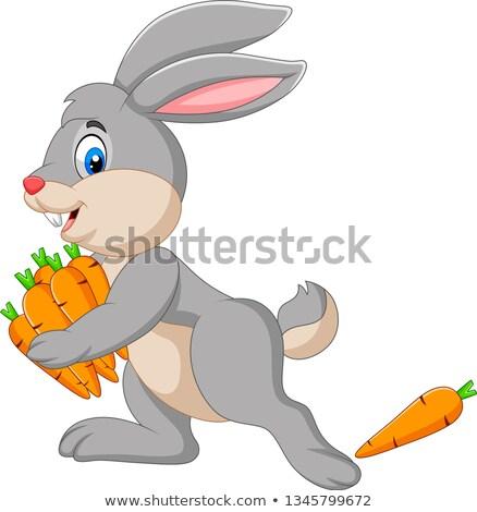 Cartoon Smiling Thief Bunny Stock photo © cthoman