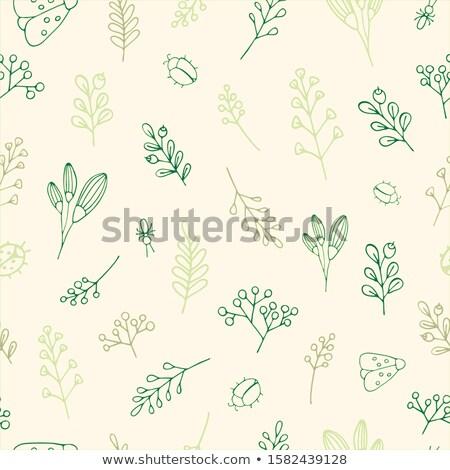 Beetle on seamless pattern Stock photo © bluering