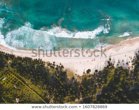 Scène chalet île illustration maison paysage Photo stock © colematt