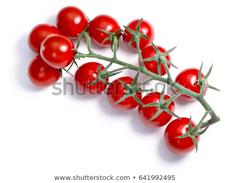 Cluster of tomatoes, paths, top view Stock photo © maxsol7