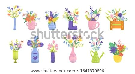 закрывается Tulip ваза воды набор вектора Сток-фото © robuart