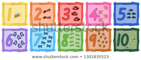 Set of insect number banner Stock photo © colematt