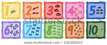 набор насекомое числа баннер иллюстрация фон Сток-фото © colematt