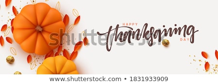 happy thanksgiving day poster with pumpkin vector stock photo © robuart