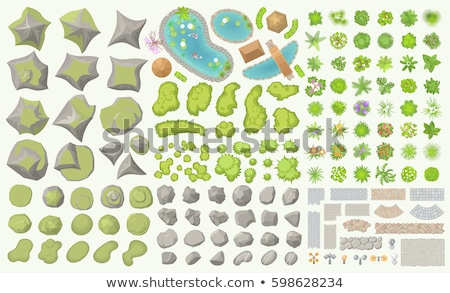 Plantes roches isolé illustration paysage Photo stock © bluering