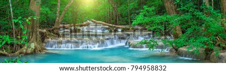 forest with a waterfall stock photo © oleksandro