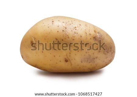 isolated raw potato Stock photo © M-studio