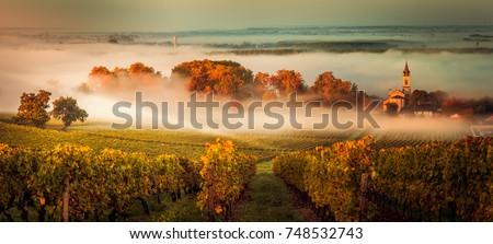 Bordeau pecsét fehér város Európa gomb Stock fotó © chrisdorney