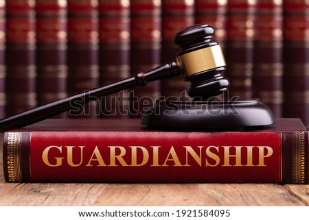 Gavel And Striking Block Over Guardianship Law Book Stock photo © AndreyPopov