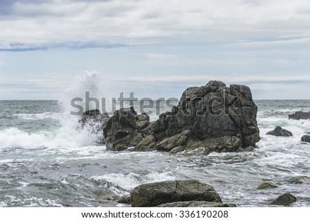 Sea wave rolled ashore Stock photo © cherezoff