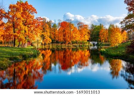 осень озеро живописный мнение осень красивой Сток-фото © brm1949