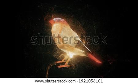 mavi · altın · renkli · kuşlar · yalıtılmış · beyaz - stok fotoğraf © elenarts