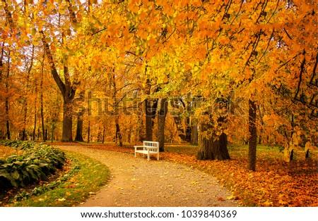 скамейке · парка · Vintage · цвета · дерево - Сток-фото © smuki