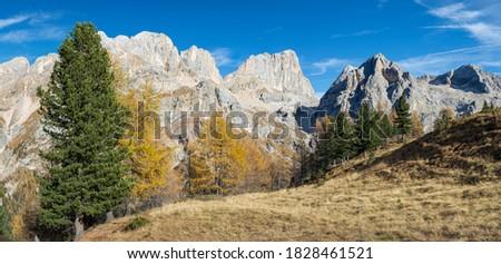 Dolomiti - Contrin valley Stock photo © Antonio-S