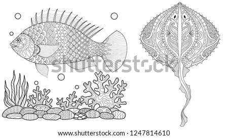 Wektora ryb czyste linie gryzmolić projektu Zdjęcia stock © ayaxmr