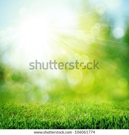 çim · görüntü - stok fotoğraf © julietphotography