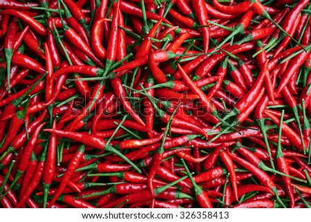 red hot chilli pepper on grey background Stock photo © juniart