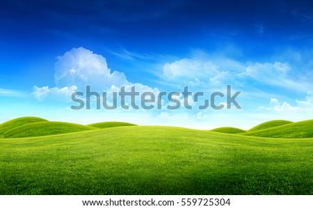 landscape, green Stock photo © Andriy-Solovyov
